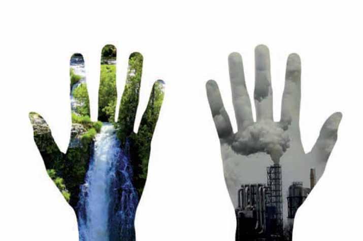 las_tres_sillas_26_enero_dia_mundial_educacion_ambiental_ (1)