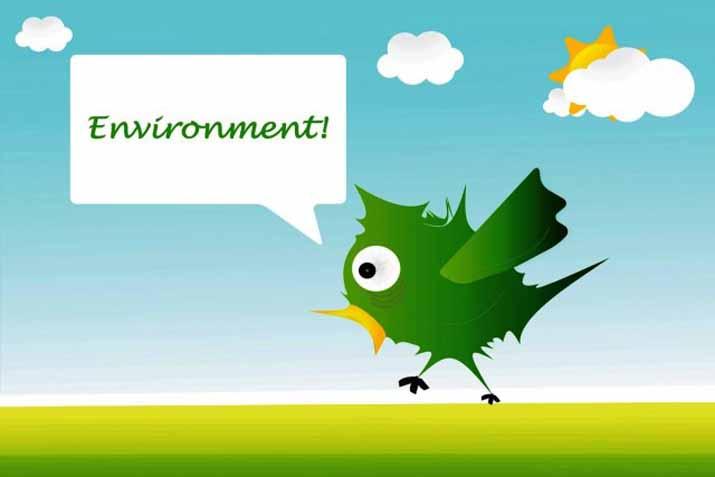 las_tres_sillas_26_enero_dia_mundial_educacion_ambiental_ (2)