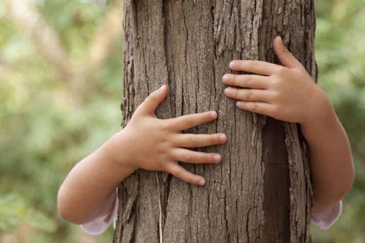 las_tres_sillas_26_enero_dia_mundial_educacion_ambiental_ (3)