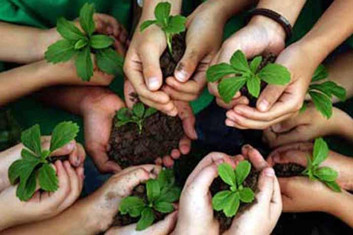 http://lastressillas.com/wp-content/uploads/2015/01/las_tres_sillas_26_enero_dia_mundial_educacion_ambiental_-4.jpg